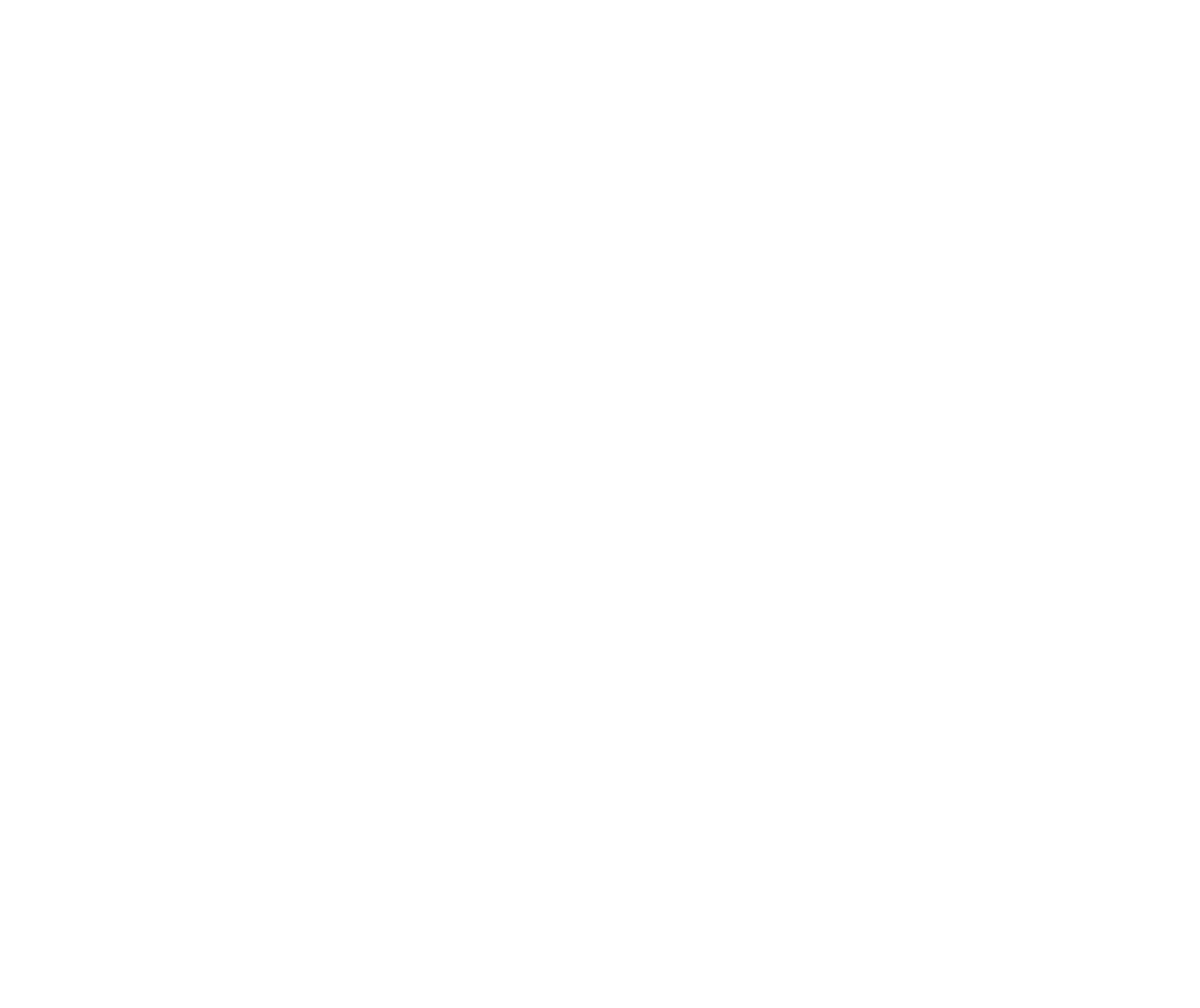 The Lash Co